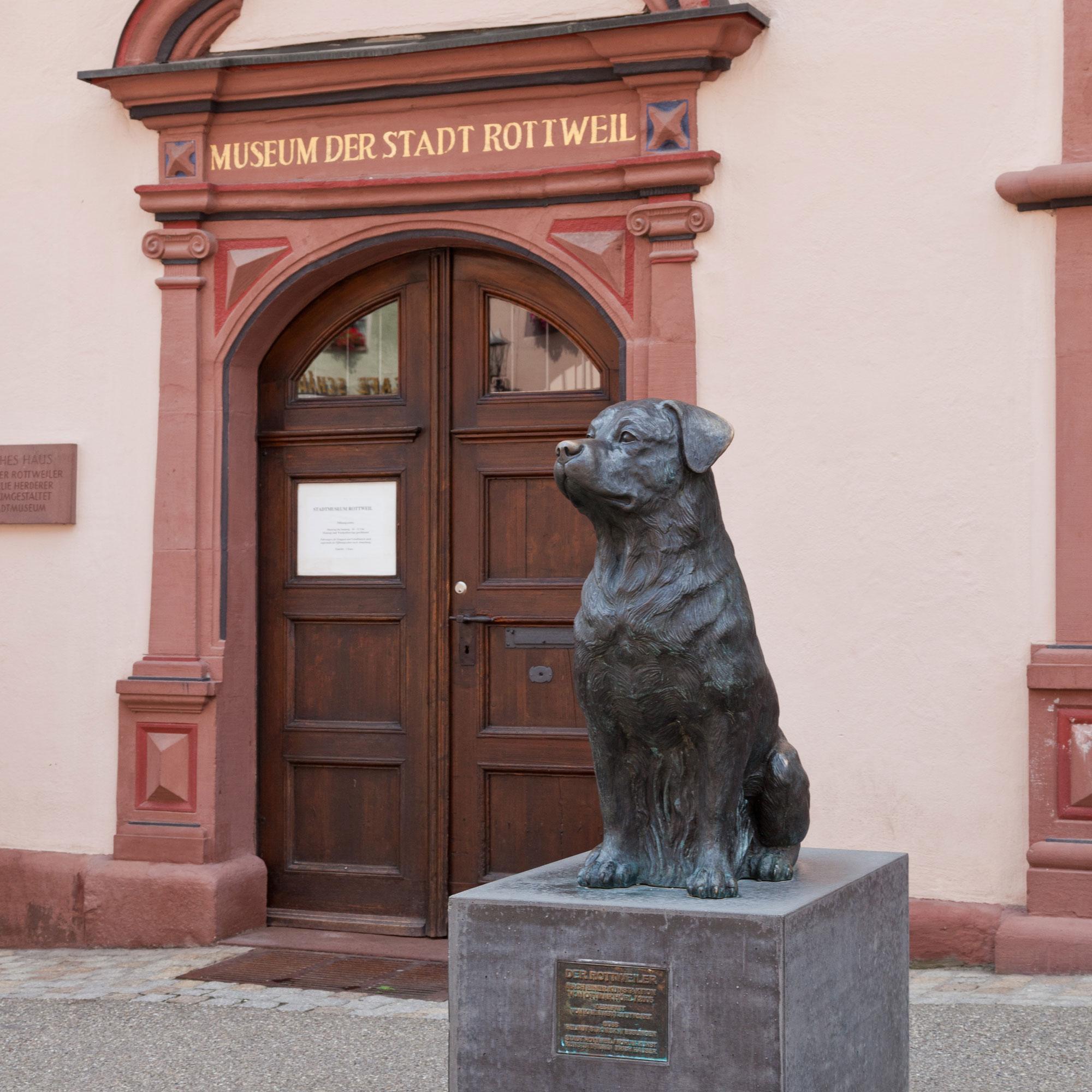 Der Rottweiler vor dem Stadtmuseum